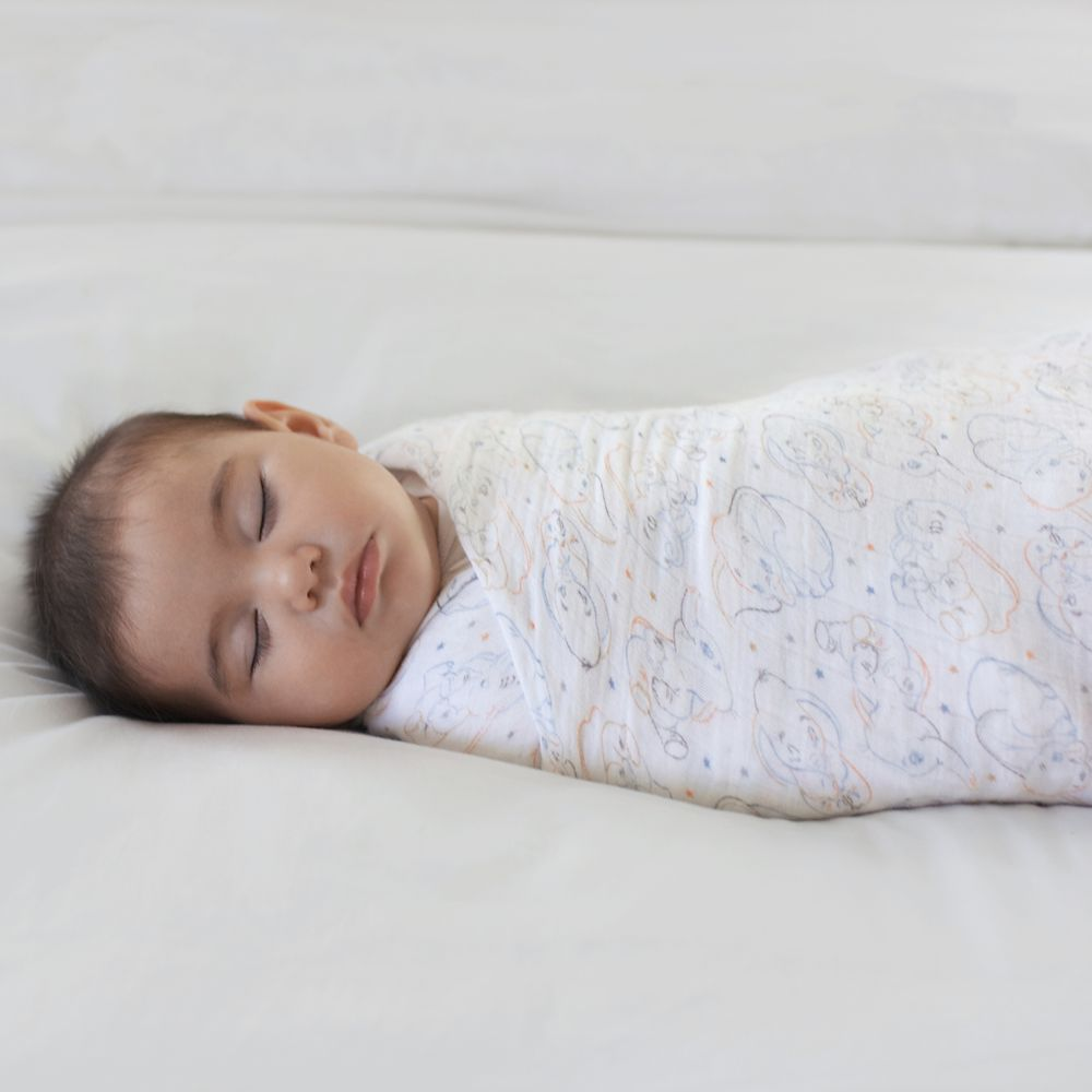 Dumbo Swaddle Set for Baby by aden + anais®