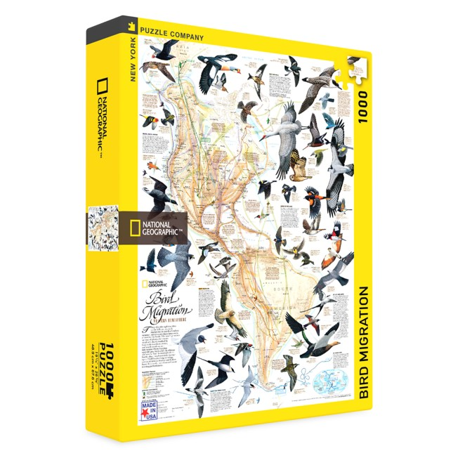 Bird Migration Puzzle –National Geographic