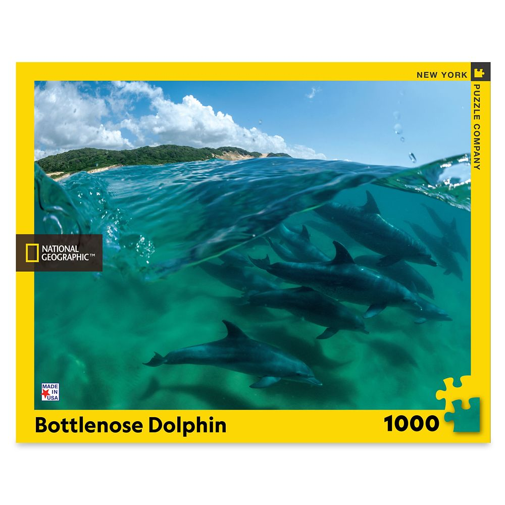 Bottlenose Dolphin Puzzle – National Geographic
