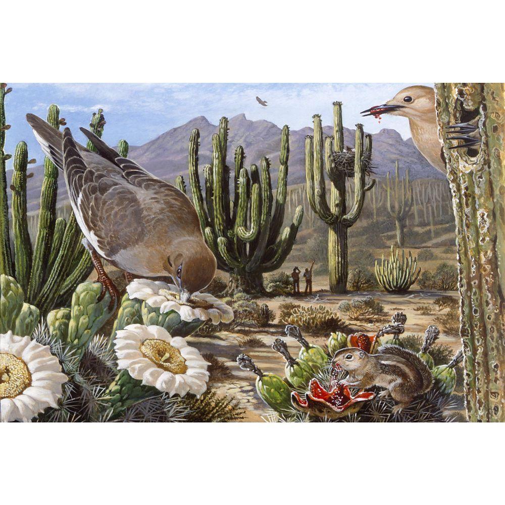 Desert Ecosystem Puzzle –National Geographic