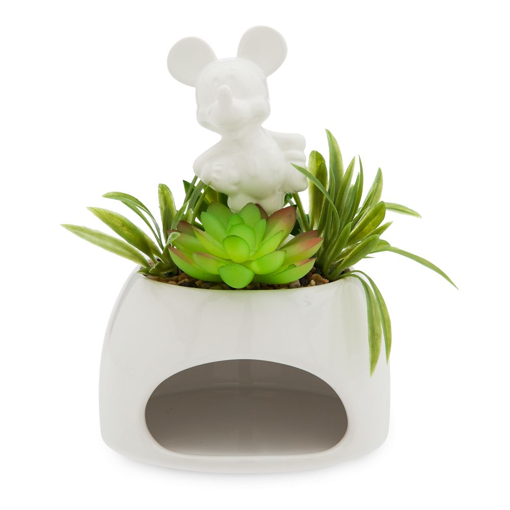 22 Disney Gifts for Mom featured by top US Disney blogger, Marcie and the Mouse: Mickey Mouse Ceramic Pot and Faux Succulent – Disney Eats