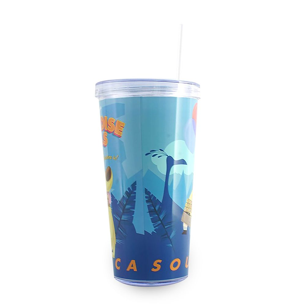 Up Tumbler with Straw