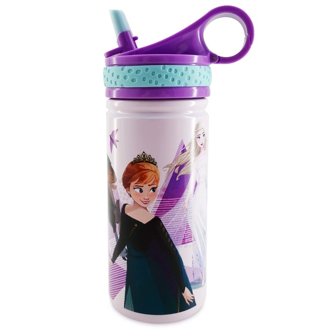 Frozen 2 Stainless Steel Water Bottle with Built-In Straw