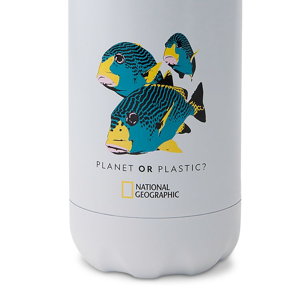 National Geographic Fish S'well Water Bottle