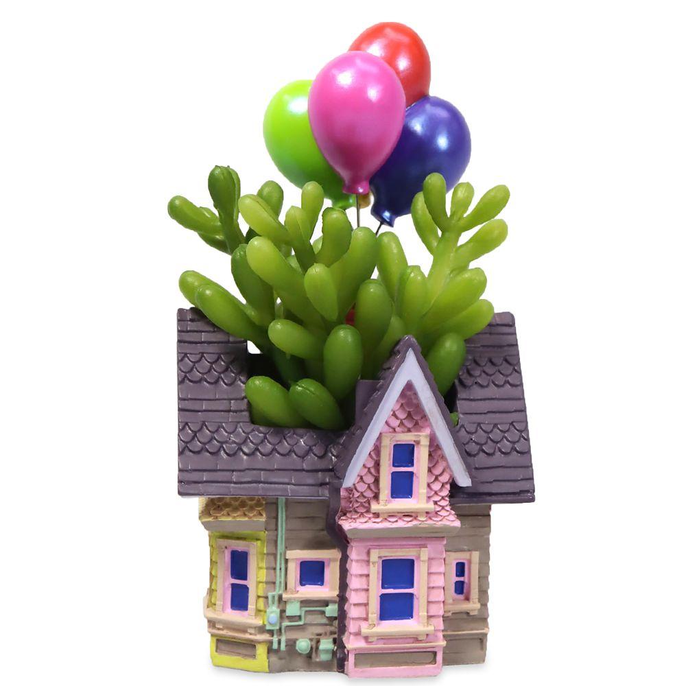 Up House Succulent Holder