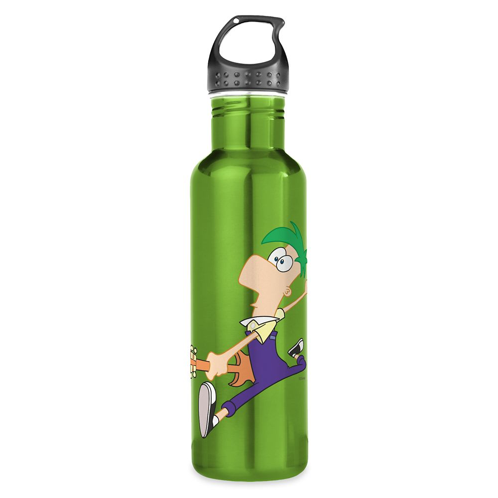Ferb Stainless Steel Water Bottle – Phineas and Ferb – Customized