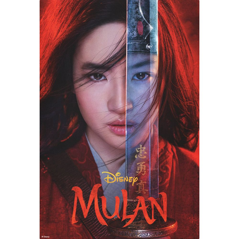 Mulan Sword Reflection Theatrical Art Canvas Print – Live Action Film – Customized