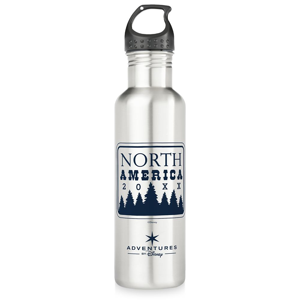 Adventures by Disney North America Family Adventure Stainless Steel Water Bottle  Customizable