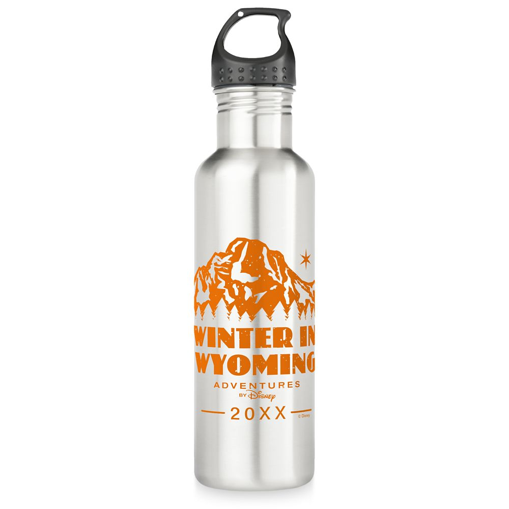 Adventures by Disney Winter in Wyoming Stainless Steel Water Bottle  Customizable