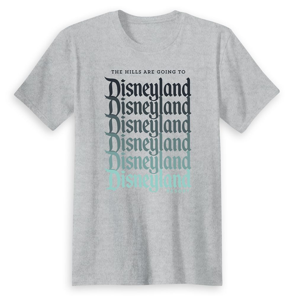 Adults Disneyland Ombre Family Vacation T-Shirt  Customized