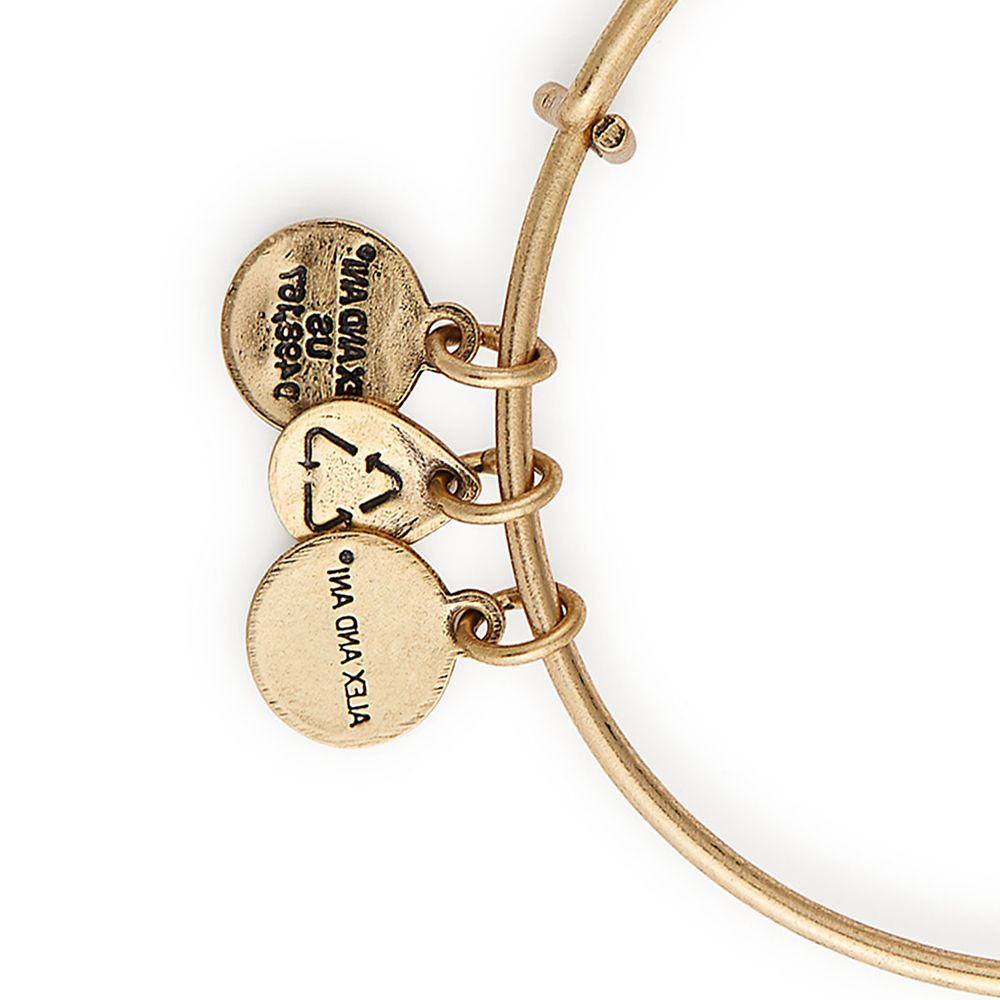 Belle Mirror Bangle by Alex and Ani