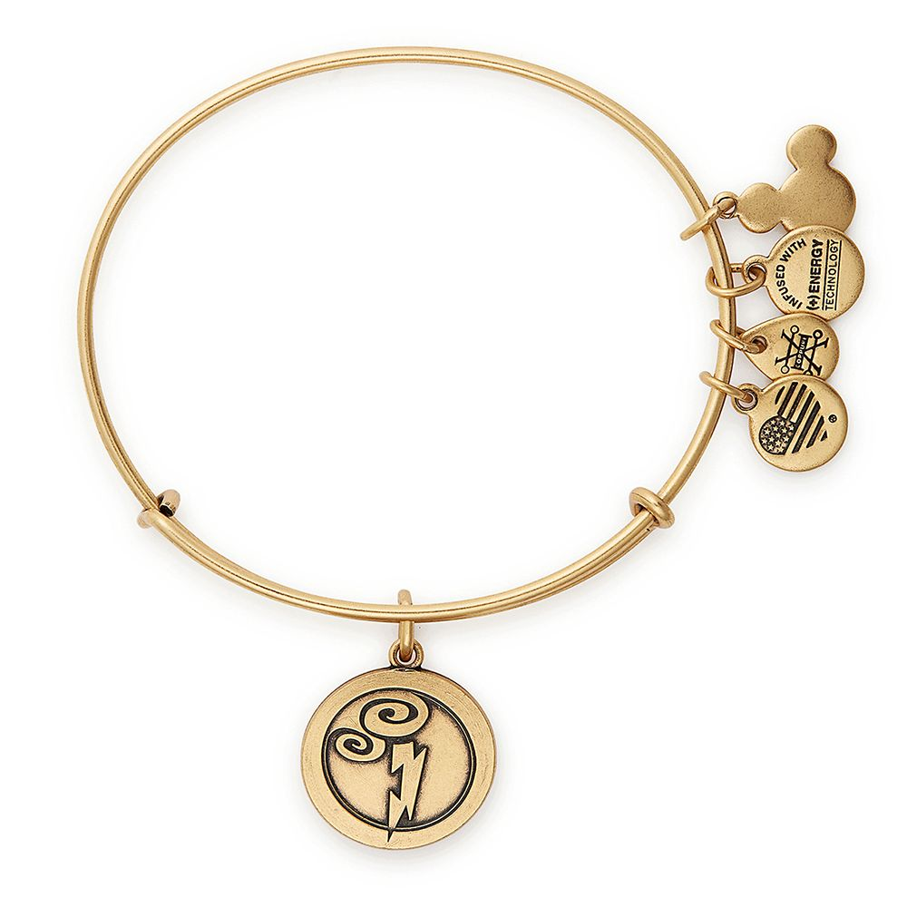 Hercules Bangle by Alex and Ani
