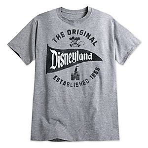 Disneyland Pennant Tee for Adults – Gray