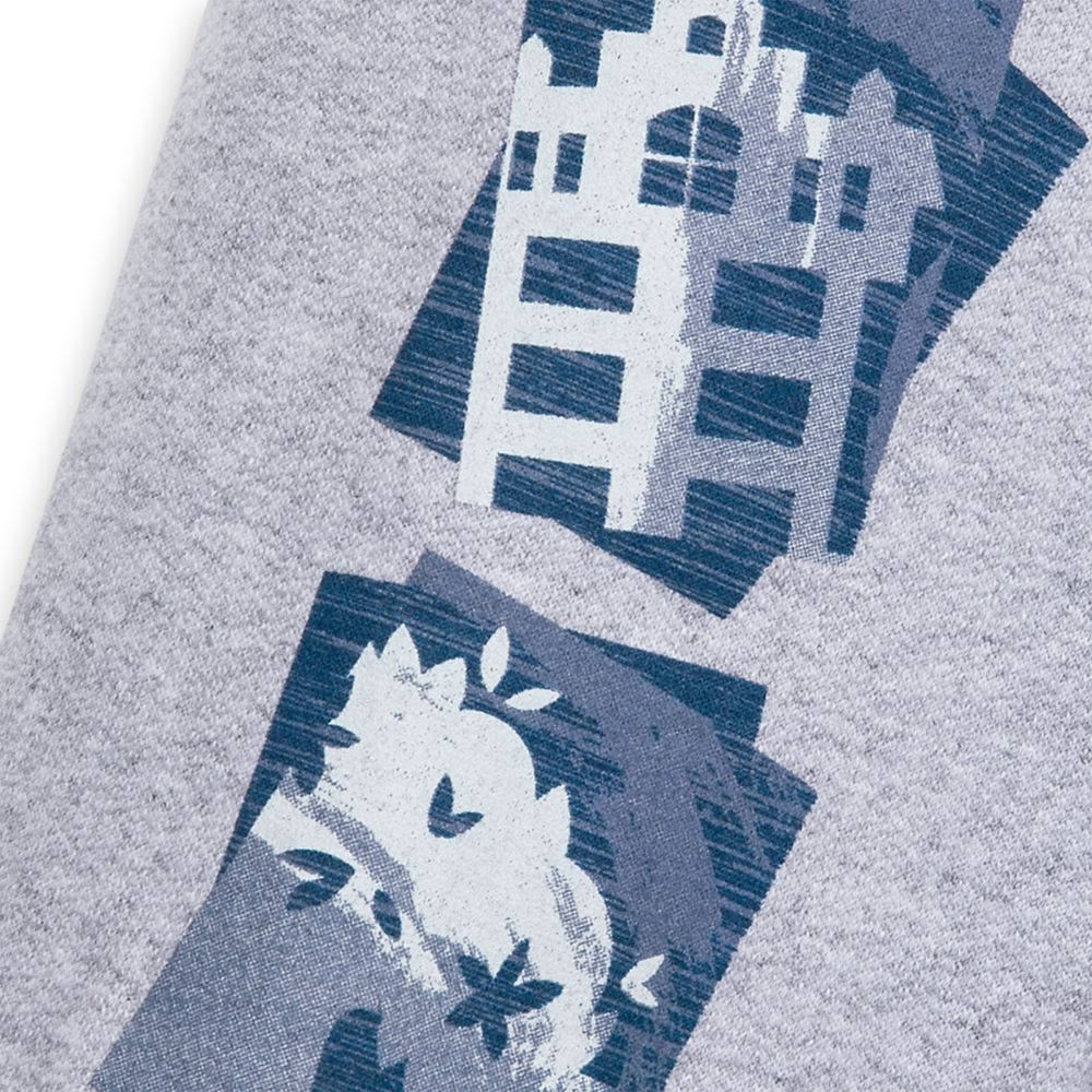 Mickey Mouse and Friends Sweatshirt for Adults – Walt Disney World 2020