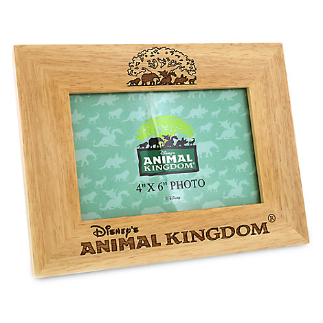 Disney's Animal Kingdom Photo Frame - 4'' x 6''