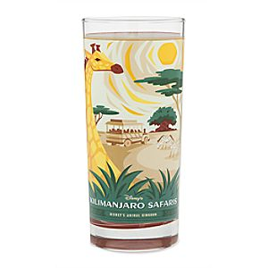 Disneys Animal Kingdom Glass Tumbler