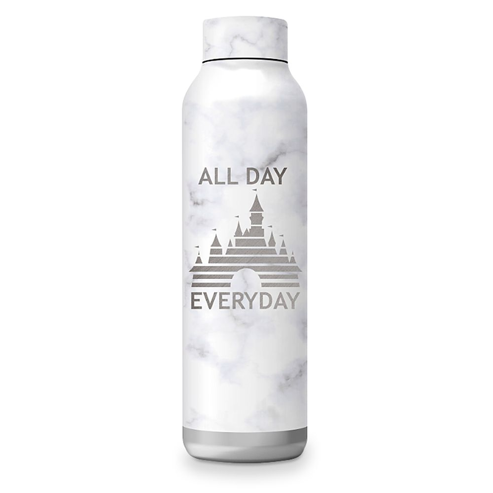Fantasyland Castle Stainless Steel Water Bottle