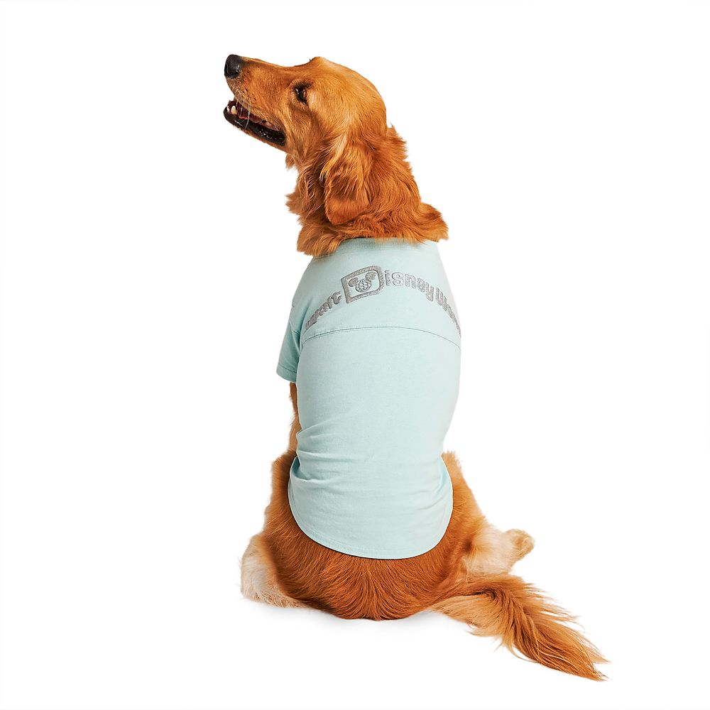 Walt Disney World Spirit Jersey for Dogs – Arendelle Aqua