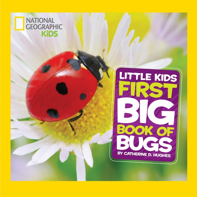 Little Kids First Big Book of Bugs – National Geographic