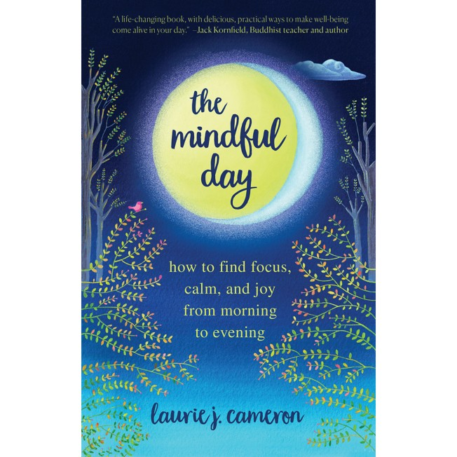 The Mindful Day: How to Find Focus, Calm, and Joy from Morning to Evening Book – National Geographic