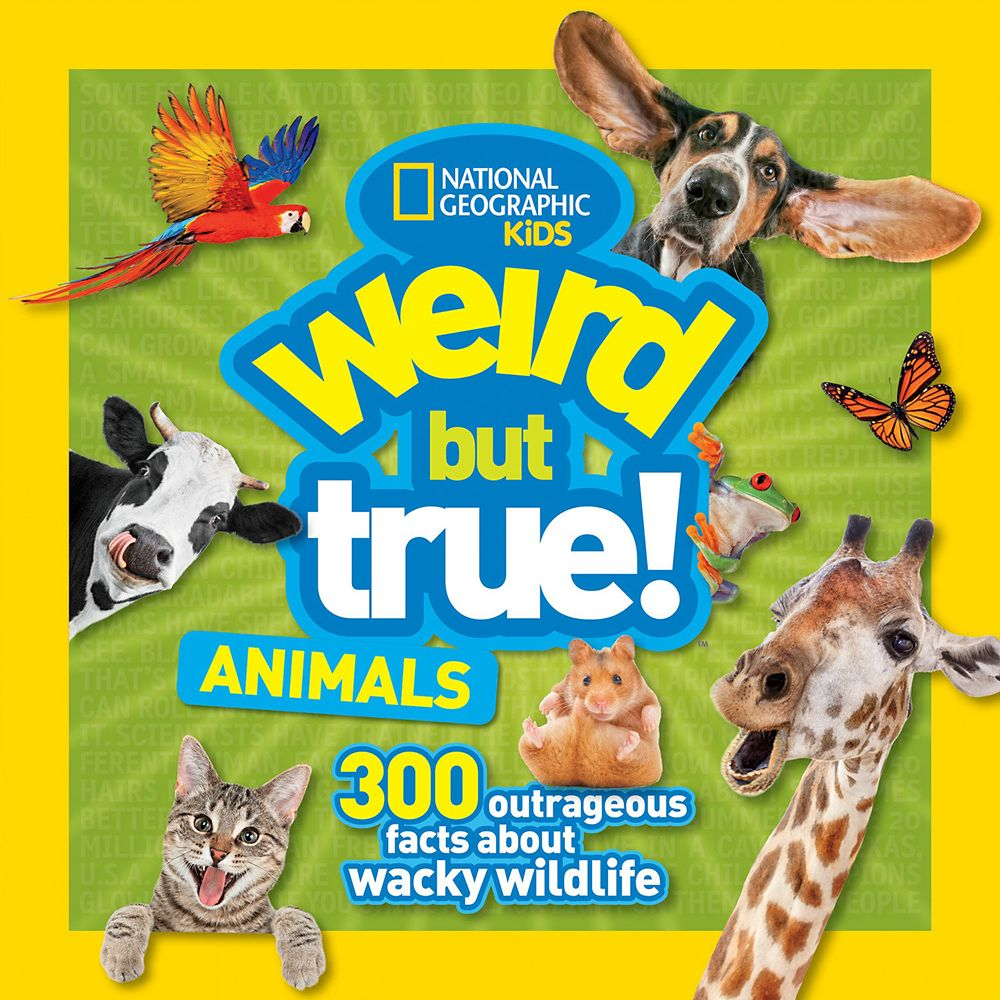 Weird But True Animals Book – National Geographic
