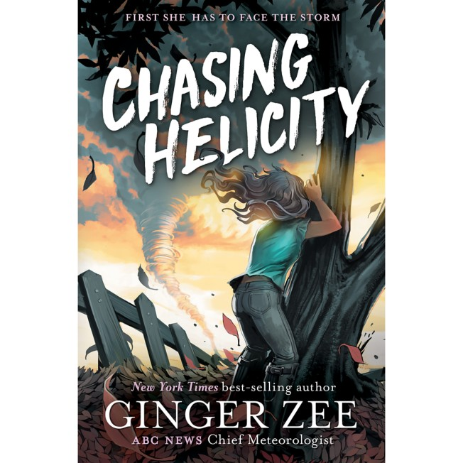 Chasing Helicity:Facing the Storm Book