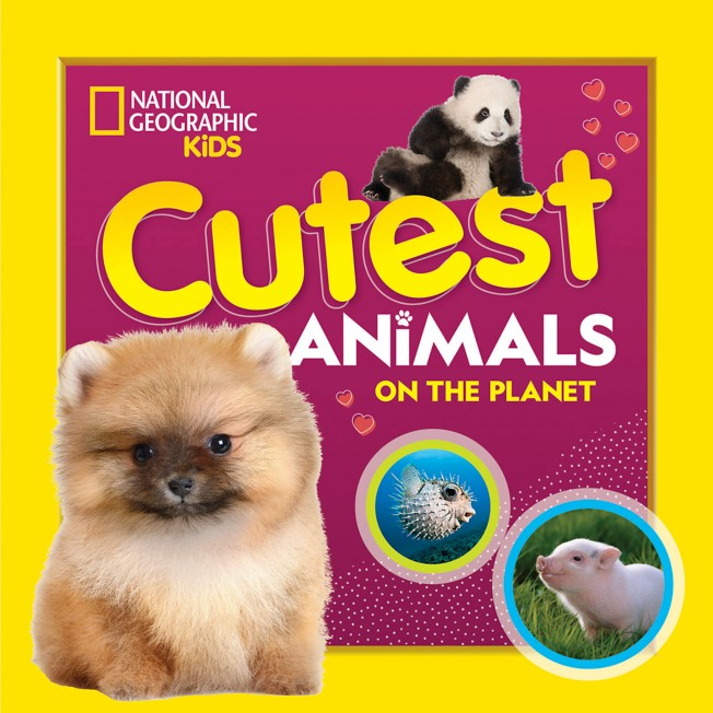 Cutest Animals on the Planet Book – National Geographic