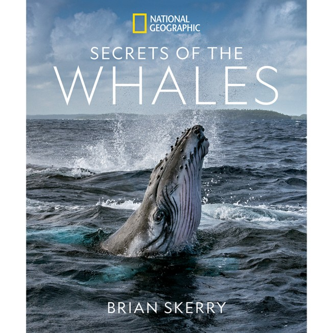 Secrets of the Whales Book