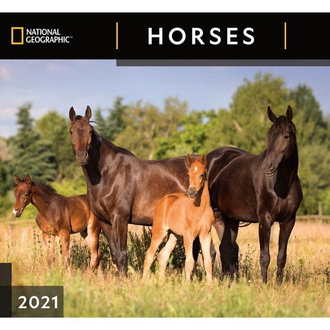 National Geographic 2021 Horses Wall Calendar