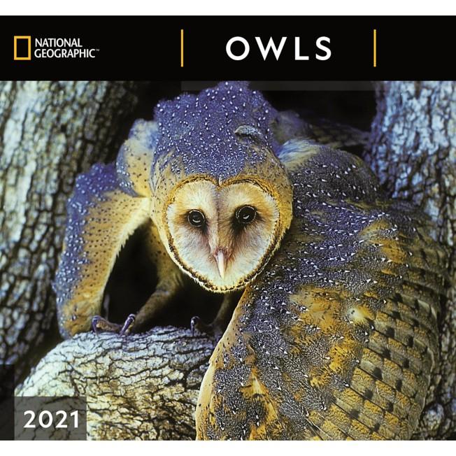 National Geographic 2021 Owls Wall Calendar