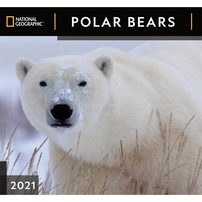 National Geographic 2021 Polar Bears Wall Calendar