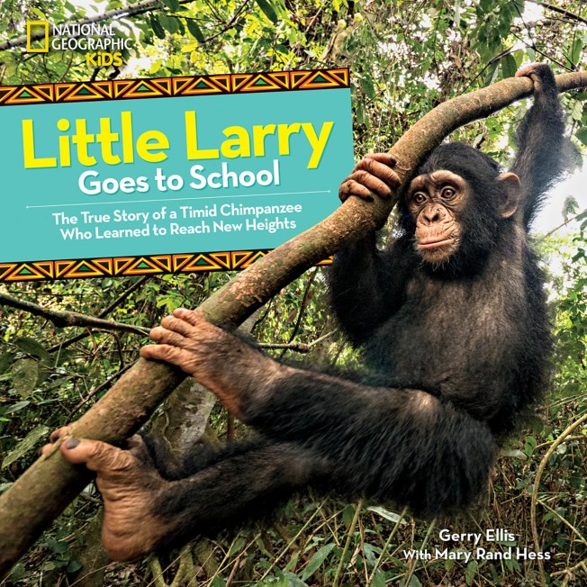 Little Larry Goes to School Book