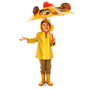 Lion Guard Rainwear Collection for Kids