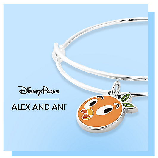 Alex and Ani Bracelet featuring a charm of Orange Bird