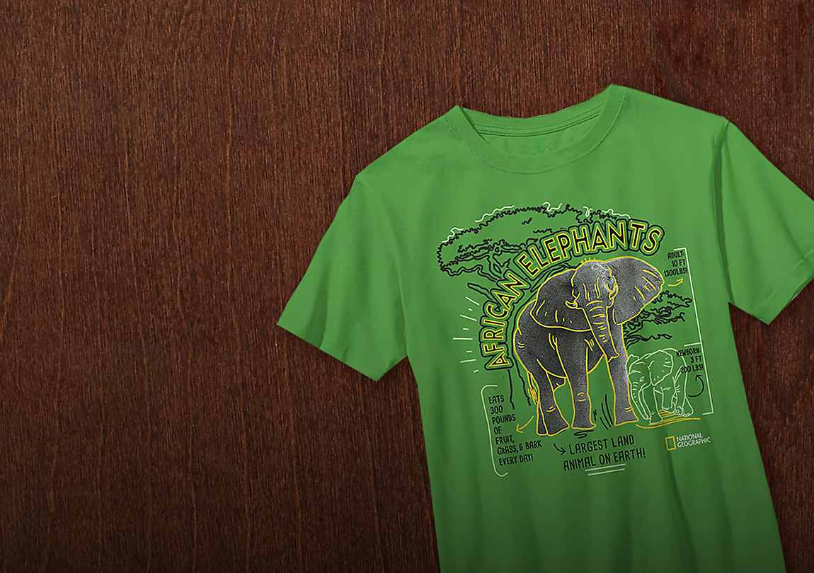 Background image of Elephant-astic Fun