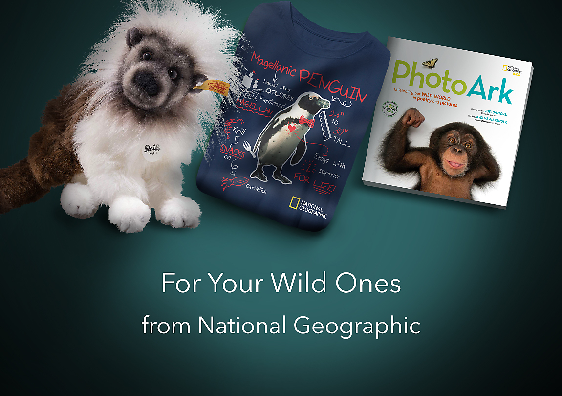 For Your Wild Ones from National Geographic Shop Now