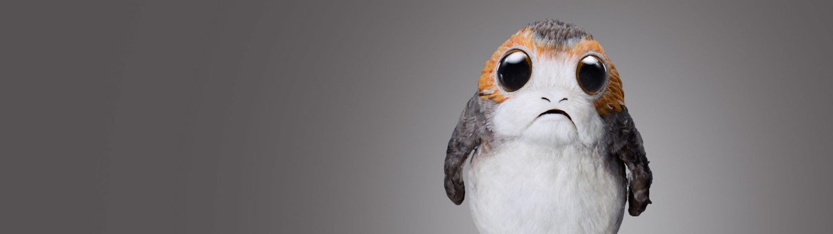 Background image of Porgs