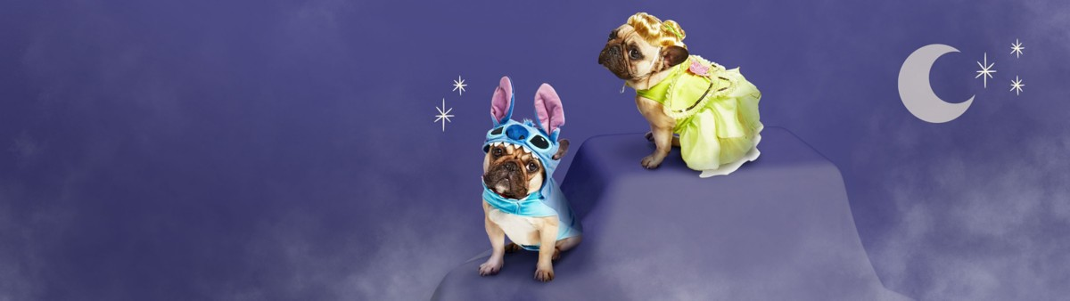 Background image of Pet Halloween Costumes