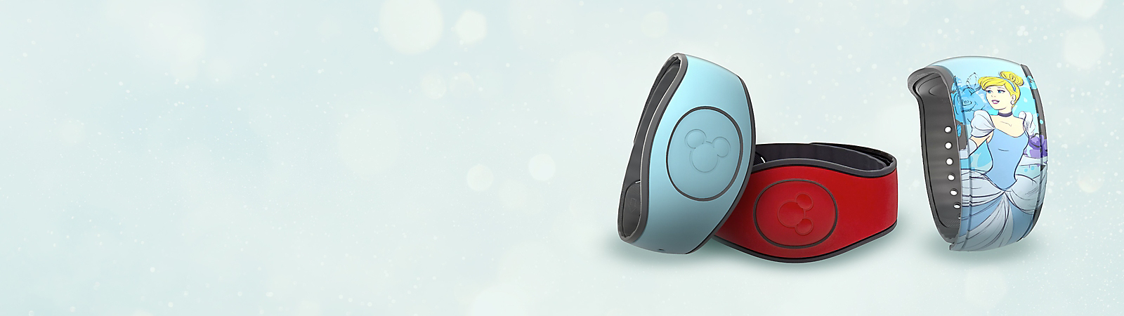 Background image of MagicBand
